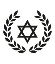 Кружка Star of David