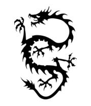 Женская футболка с длинным рукавом Дракон - змей