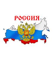 Футболка поло мужская Россия