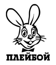 Толстовка Плейбой