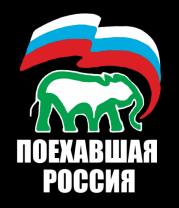 Женская футболка с длинным рукавом Поехавшая Россия
