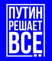 Детская футболка  Путин решает всё