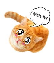 Женская майка борцовка Кошечка с глазами аниме