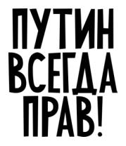 Женская футболка с длинным рукавом Путин всегда прав!