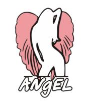 Мужская футболка с длинным рукавом Angel