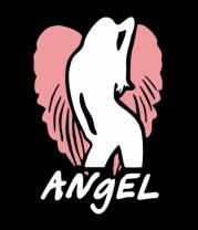 Толстовка без капюшона Angel
