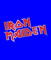 Мужская футболка  Iron Maiden (metal)