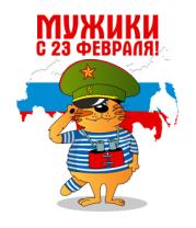 Толстовка без капюшона Кот на фоне флага