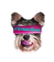 Детская футболка  Street Dog