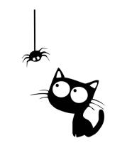 Мужская майка Кот и паучок