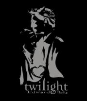 Бейсболка Twilight