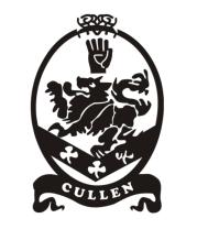 Женская майка борцовка Cullen