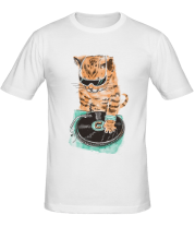 Мужская футболка  Кот скретч-мастер