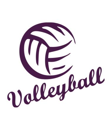Мужская футболка с длинным рукавом Volleyball