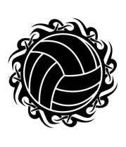 Мужская футболка с длинным рукавом Волейбольный мяч