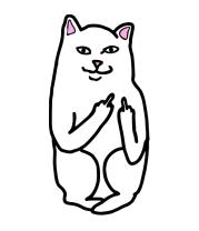 Детская футболка  Кот Lord Nermal