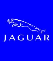 Детская футболка   Jaguar (Ягуар)