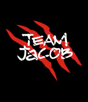 Женская футболка с длинным рукавом Team Jacob