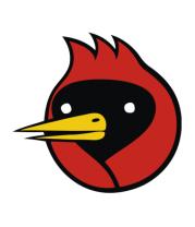 Кружка Омская птица