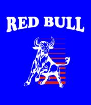 Мужская футболка с длинным рукавом Red Bull