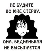 Женская футболка с длинным рукавом Не будите во мне стерву