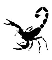 Детская футболка  Scorpions