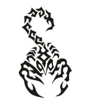 Детская футболка  Скорпион черный