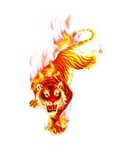 Мужская футболка  Тигр в огне
