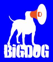 Женская футболка  Bigdog