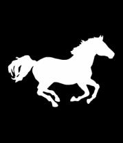 Женская футболка с длинным рукавом Лошадь